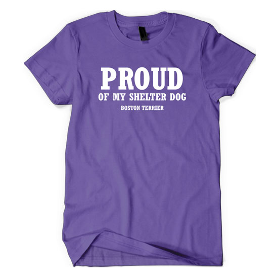 Proud Of My Shelter Dog – Boston Terrier